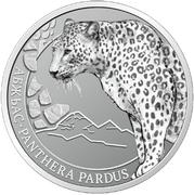 2 Apsars (Central Asian leopard) – reverse