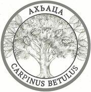 2 Apsars (Carpinus  betulus) – reverse