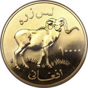 10 000 Afghanis (Marco Polo Sheep) -  reverse