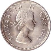 5 Shillings - Elizabeth II (1st portrait) -  obverse
