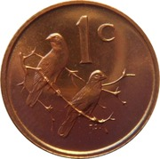 1 Cent (English Legend - SOUTH AFRICA) – reverse