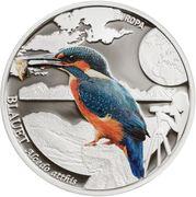 5 Diners - Joan Enric Vives i Sicília (Kingfisher) -  reverse