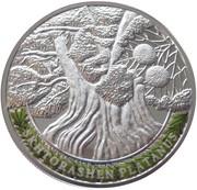 100 Dram (Skhtorashen platanus) – reverse