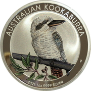 1 Dollar - Elizabeth II (6th Portrait - Australian Kookaburra - Coloured) – reverse