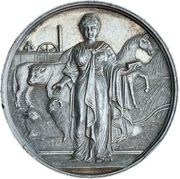 Medal - First Prize (The International Agricultural Society of  Victoria) – obverse