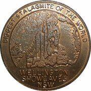 Medal - Souvenir Tourist Coin (Wellington Showcaves NSW) – obverse