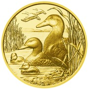 100 Euro (Mallard duck) -  reverse