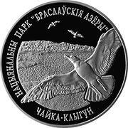 1 Rouble (Braslaw Lakes National Park. Herring Gull) – reverse