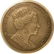 4 Pounds - Elizabeth II (Medusa) – obverse