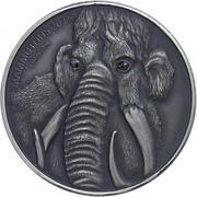 1000 Francs CFA (Mammoth Mother) – reverse