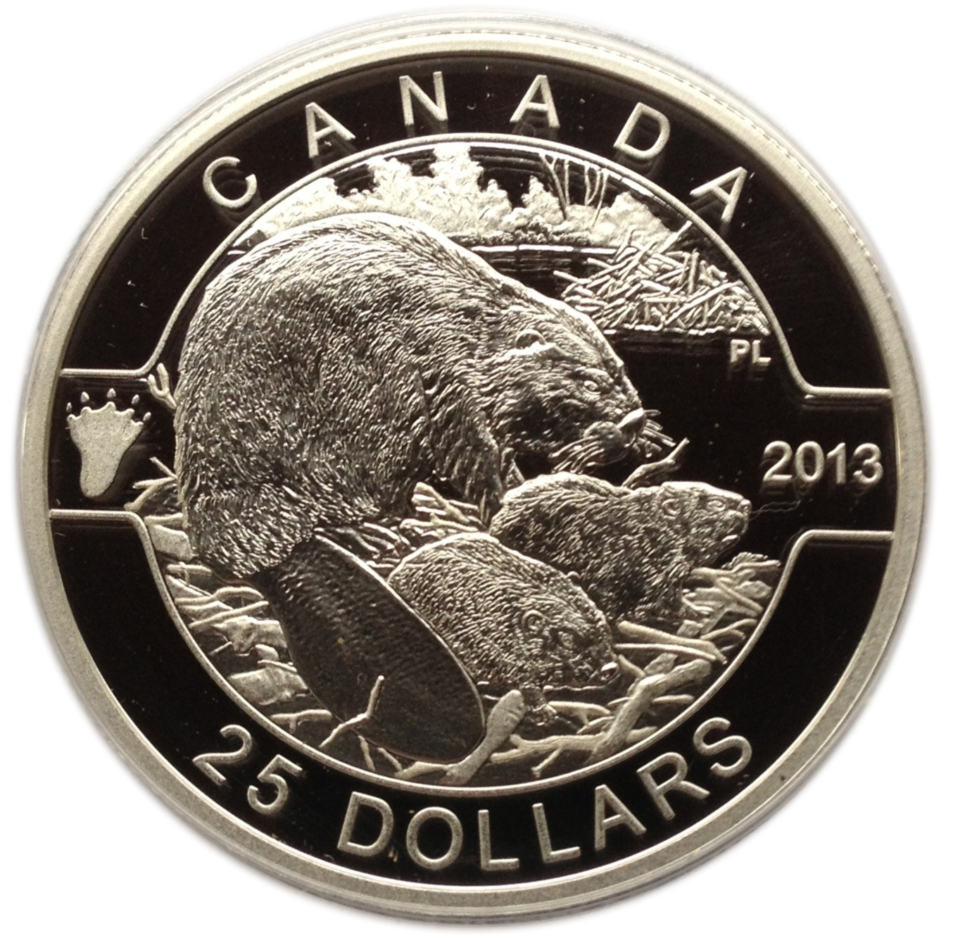 canadian currency coins names