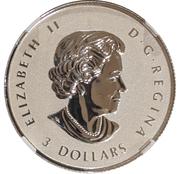 3 Dollars - Elizabeth II (1/4 OZ. Silver Bullion Coinage; Maple Leaf) -  obverse