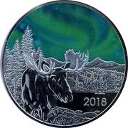 1 oz Silver (TD Northern Lights) – obverse