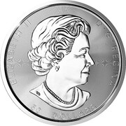 50 Dollars - Elizabeth II (10 oz. Silver Bullion; Magnificent Maple Leaves) -  obverse