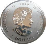 3 Dollars - Elizabeth II (Niagara Falls Winter Lights) – obverse