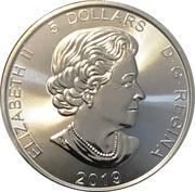 5 Dollars - Elizabeth II (1 oz. Silver Bullion Coinage; Grizzly) -  obverse