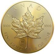 2500 Dollars - Elizabeth II (40th Anniversary of the Gold Maple Leaf) -  reverse