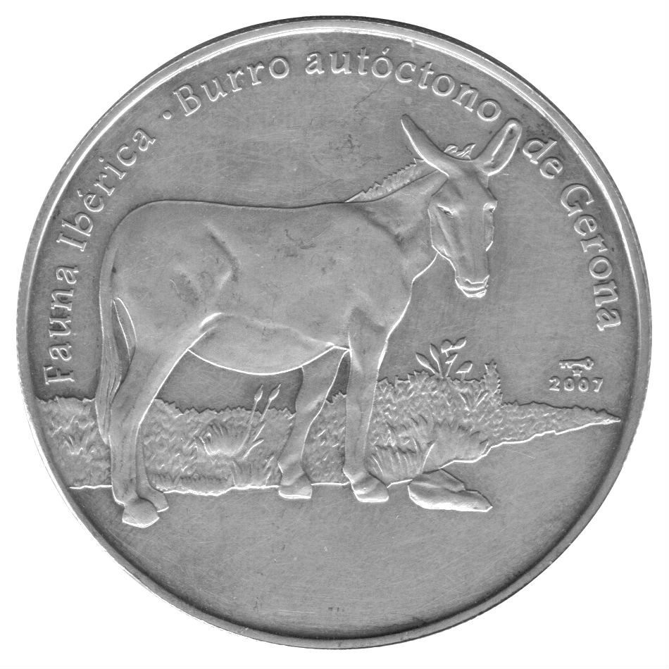 donkey coins