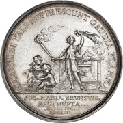 Medal - Frederik V (Wedding with Julianne Marie; silver issue) – reverse
