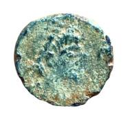 AE Nummus - Leo I (Aelia Verina) – obverse