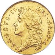 1 Guinea - James II (2nd bust) – obverse