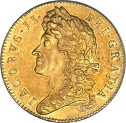 5 Guineas - James II (2nd bust) – obverse