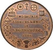 Medal - Industrial exhibition in Regensburg – reverse