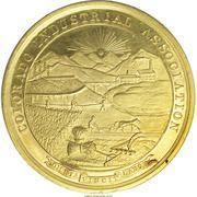 Award Medal - Colorado Industrial Association – obverse