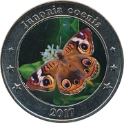1 Dollar (Junonia coenia) – reverse