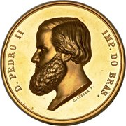 Medal - Pedro II (Brazil National Exposition Award Medal to Thomas Driend) – obverse