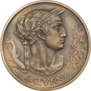 Medal - Cosulich Line -  obverse