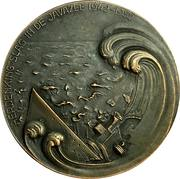Medal - Allied forces in the java sea – reverse