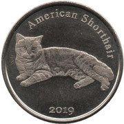 1 Pound (American Shorthair) – reverse