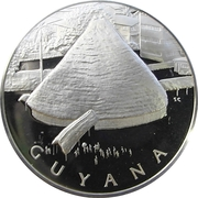 Medal - United Nations (Guyana) – obverse