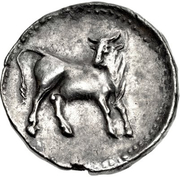 Stater -  reverse