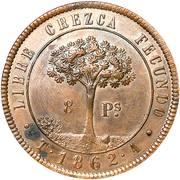 8 Pesos (Provisional Coinage) – reverse