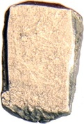 ½ Karshapana - Saurasena Janapada – reverse