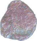 AE Unit - Vaisravana (Maghas of Kausambi) – obverse