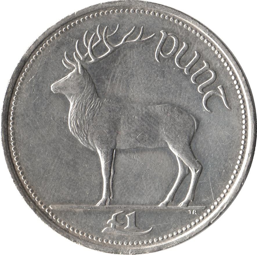 irish 1 pound coin