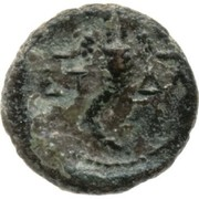 AE 12 - Herod Agrippa II – reverse