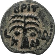 Prutah - Claudius I (Marcus Antonius Felix as Procurator; Caesarea) – reverse