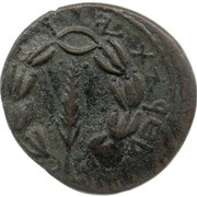 Prutah - Simeon bar Kosevah – reverse