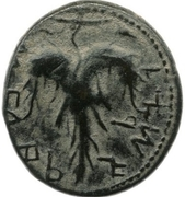 Middle bronze - Simeon bar Kosevah (Year Two) – reverse