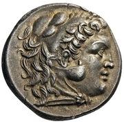 Tetradrachm - Alexander III (Kallatis) – obverse