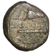 Bronze Æ16 - Alexander III (Kourion) – reverse