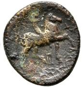 Bronze Æ20 - Kassander – reverse