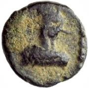 2½ Nummi - Gelimer (Carthage) – obverse