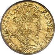 Ducat - Zygmunt II August (Wilno mint) – obverse