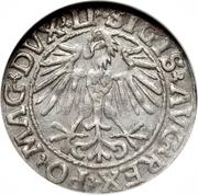 Halfgroat - Zygmunt II (Lithuania) – obverse