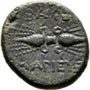 Bronze Æ13 - Timocharis – reverse